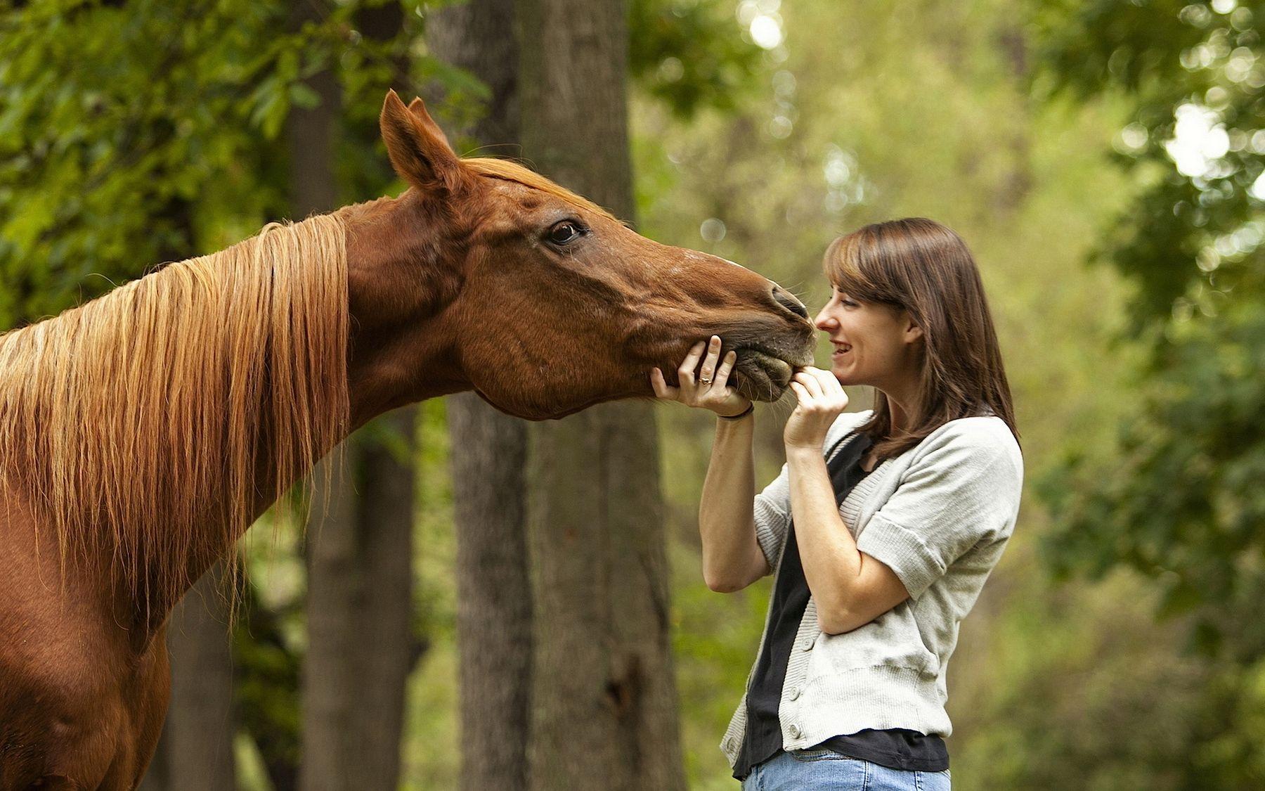 любом фото людей с конями она зачастую