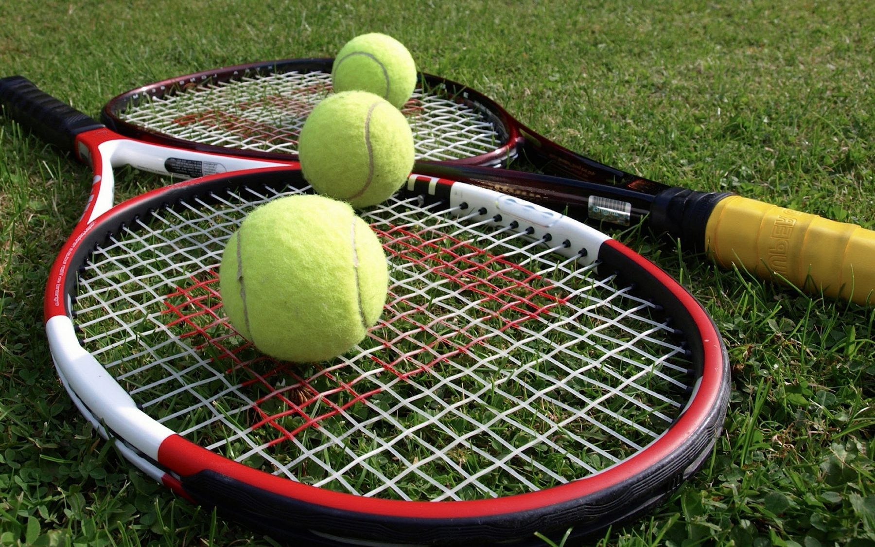 tennis davis cup play sport